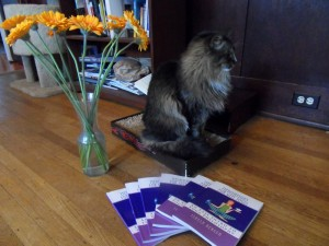 My books look even better posing with my cat.