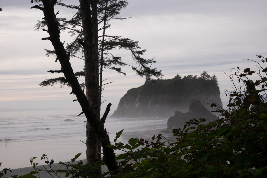 Ruby Beach Olympic peninsula