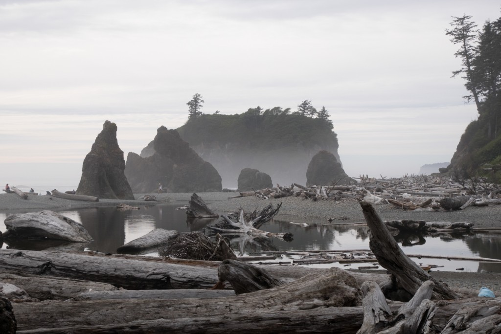 Ruby Beach Olympic